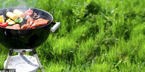 Гриль барбекю: готовим с удовольствием