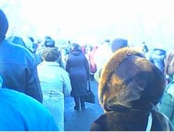 """""""Издевательская акция над мирным населением со стороны вояк ДНР и ВСУ"""" - блокпосты Горловка-Бахмут превращены в ад"""