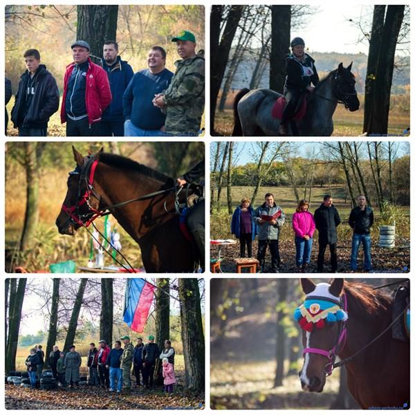 В Горловке прошли соревнования по конному спорту. Смотрите, как это было