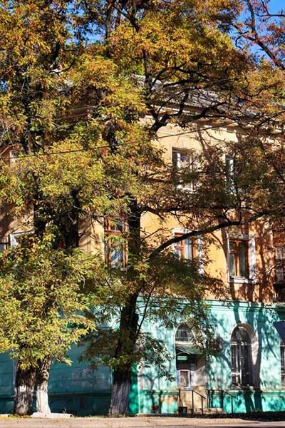 Заброшенные дома, терриконы и городские улицы: ФОТОРЕПОРТАЖ из Горловки