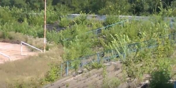 Жители Горловки самостоятельно расчищают стадион на территории ДЮСШ, заросший кустарниками