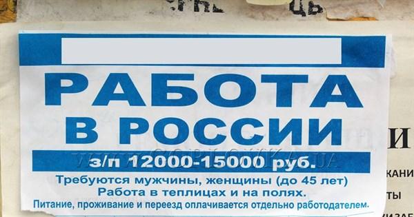 Горловчан приглашают работать в российских полях за 12 тысяч рублей