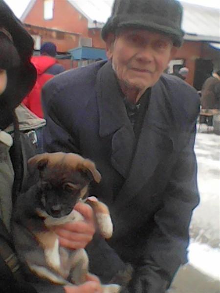 100-летний житель Горловки просит приютить кутенка, которого не может прокормить