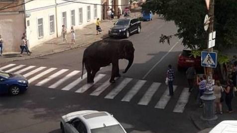 Последние новости Одессы: интересно, оперативно, объективно