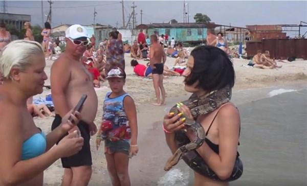 На пляже поселка Седово появился удав