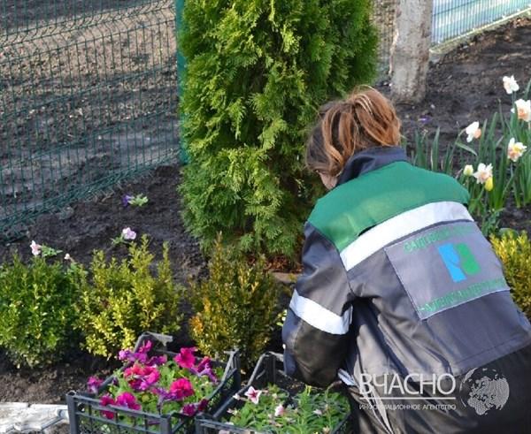 Горловчанка-переселенка будет выращивать необычные для донецкого региона растения на грантовые деньги