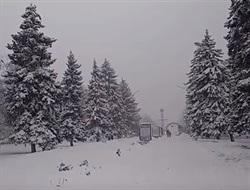 Заснеженная Горловка: видео из города, в который пришла настоящая зима