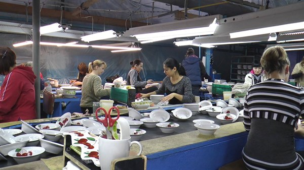 Завод для переселенцев: как Дружковский фарфоровый обеспечил работой людей, бежавших от войны