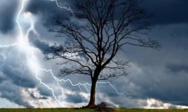 В ближайший час Донецкую область и Горловку накроют дожди и грозы