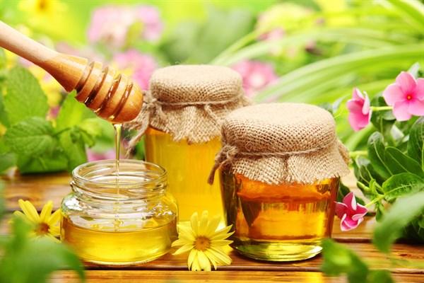 В Горловке проходит выставка меда