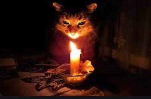 В Горловке 14 мая в нескольких районах отключат свет и воду