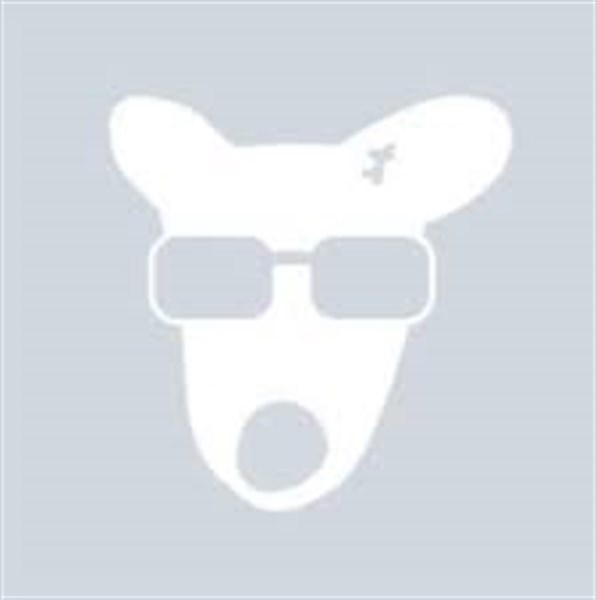 """Мэр Горловки от """"ДНР"""" ушел писать посты в """"Телеграм"""", который запрещен в России"""