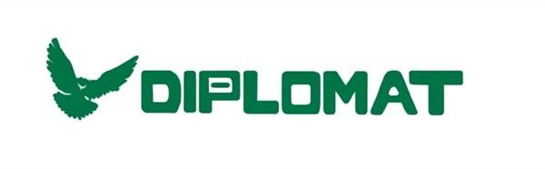 Шины Diplomat: главные особенности зимних и летних моделей, преимущества и стоимость