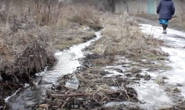 """Поселок """"серой зоны"""": из-за шахтных вод, стекающихся из Горловки, на огородах поселились лягушки, превратив все в болото"""