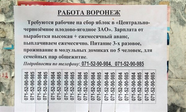 Рынок жилья и труда в Горловке: что предлагают уличные объявления (ФОТО)