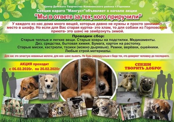 Жителей Горловки просят помочь приюту для бездомных животных