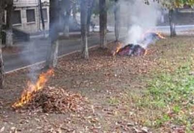 В Горловке объяснили, куда обращаться с жалобами на людей, поджигающих листву