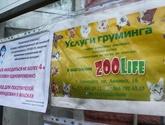 В Горловке в связи с распространением коронавирусной инфекции медикам предоставили бесплатный проезд в электротранспорте, фото-2